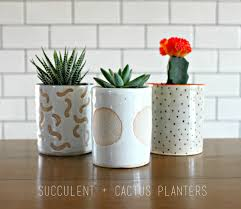 Cactus Planters by How To Create A Succulent Planter