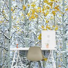 snow covered aspen trees colorado usa on smooth peel u0026 stick