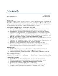 Resume Samples Insurance by Loan Adjuster Sample Resume Security Agent Cover Letter Subject