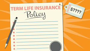 how much does term insurance cost