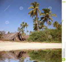 The Shack The Shack On The Beach Royalty Free Stock Image Image 12561546