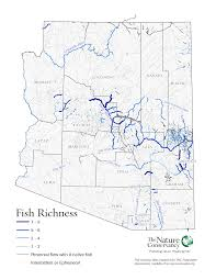 Arizona Maps by Arizona Rivers Fish Richness Map The Nature Conservancy U0027s Center