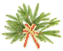 new year decoration branch of christmas tree with ribbon christmas and new year