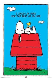 snoopy on his dog house happiness is home amen to that after twelve days away snoopy