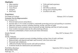 Customer Service Resume Summary Examples by Resume Samples Customer Service Representative
