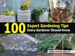 100 expert gardening tips every gardener should know