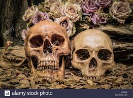 still life painting photography with couple human skull and roses