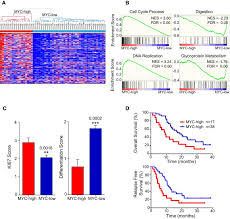 gene expression profiling of patient u2010derived pancreatic cancer