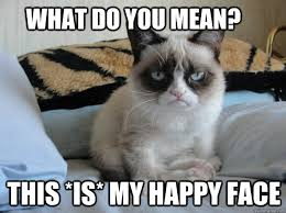 Grumpy Face Meme - what do you mean this is my happy face grumpy cat ii quickmeme
