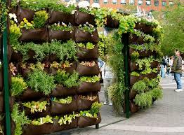 Outdoor Container Gardening Ideas 10 Tips For Starting An Edible Container Garden Matador Network