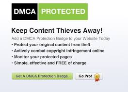 reviewed247 dmca com review