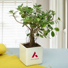 corporate gifts business promotional gifts supplier in