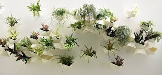 articles with wall plant pots indoor tag wall plant pots images
