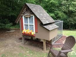 cooped inn backyard chickens
