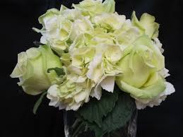 green roses white green hydrangeas with green roses in a vase boxwoods london