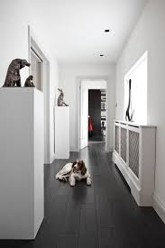 Black And White Laminate Flooring Choosing The Best Type Of Flooring For Dogs And Their Owners