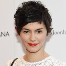 360 short hairstyles 10 stunning short hairstyles for thick hair stylecaster