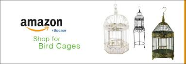 How To Decorate A Birdcage Home Decor Home Decor Ideas Using Bird Cages Home Tree Atlas
