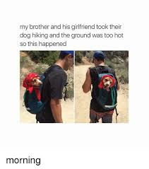 Dog Girlfriend Meme - my brother and his girlfriend took their dog hiking and the ground