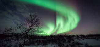 Best Time To See The Northern Lights An Insight Into The Northern Lights Cruise U0026 Maritime Voyages