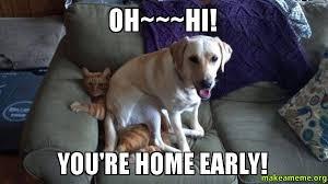 Hi Memes - oh hi you re home early make a meme