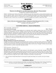 Example Sales Resumes by Sample Resume For Overseas Jobs Free Resume Example And Writing