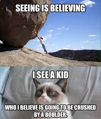 Grumpy Cat Meme - grumpy cat meme by neoncrious on deviantart