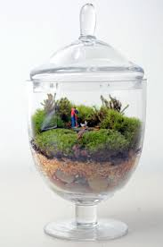 moss terrarium with little people in miniature apothecary jar