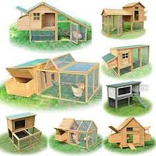 rabbit hutch plans with step by step photos mansion
