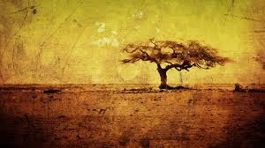 grunge tree wallpaper widescreen cool images free amazing artwork