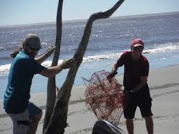 wounded nature working veterans non profit serving our coastal