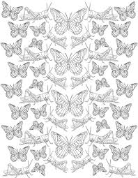 insect coloring pages terminix blog