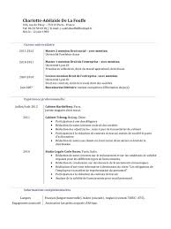 professional resume template accountant cv pdf gratuit du cv en pdf ou doc create professional resumes online for free