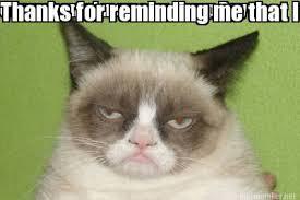 Hump Day Camel Meme - meme maker grumpy cat generator