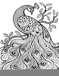 coloring pages zentangle and coloring on zentangle