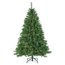 christmas trees blue spruce target