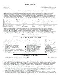 business development executive resume sales associate resume exles free best sles click here to