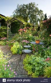 cottage garden style border of roses rosa papaver poppies poppy
