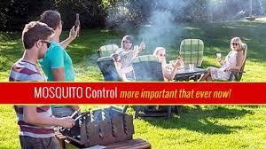 Backyard Mosquito Repellent by Backyard Mosquitoes Diy Control Tips Stop Zieka
