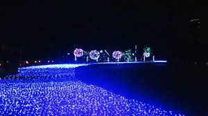 the waterfall made of light jonelle patrick u0027s only in japan