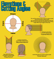 the angles and elevation used in cutting hair at different points