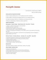 dishwasher resume sample sample resume handyman skills handyman