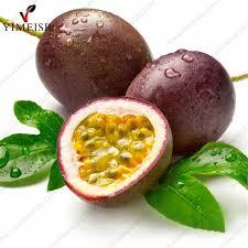 ediable fruit purple fruit passiflora edulis seeds tropical edible