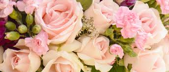 flower delivery san jose san jose florist flower delivery by s petals