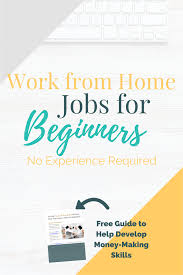 Example Of Resume For Beginners by No Experience Work From Home Jobs For Beginners
