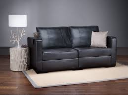 Loveseat Throw Cover Best 25 Leather Couch Covers Ideas On Pinterest Leather Sofa