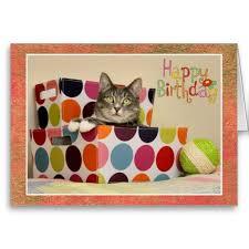 17 besten cat birthday cards bilder auf pinterest niedliche