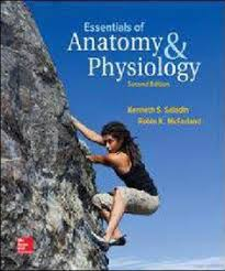 Holes Human Anatomy And Physiology 13th Edition Hole U0027s Essentials Of Human Anatomy U0026 Physiology Free Ebook