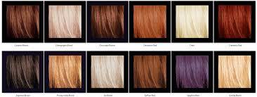 sebastian cellophane sebastian cellophane hair color gerayzade me