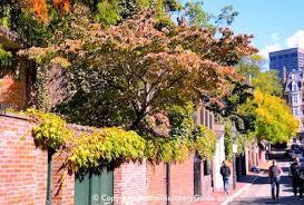 fall foliage tours 2017 boston england boston